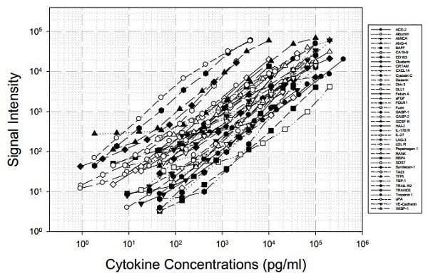 Human Cytokine Antibody Array D - Quantitative (40 targets) (ab197441) Standard Curve