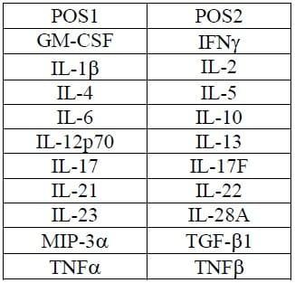 Array Map for Abcam Human Th1/Th2/Th17 Antibody Array (20 Targets)- Quantitative (ab197457)
