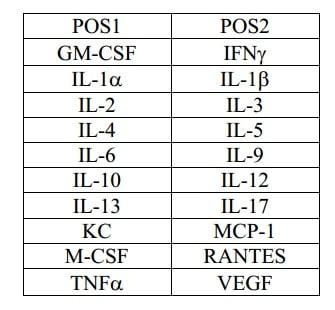 Mouse Cytokine Antibody Array A - Quantitative (20 targets) Array Map (ab197465)