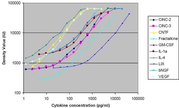 Rat Cytokine Antibody Array A (10 Targets) - Quantitative (ab197481) Standard Curve