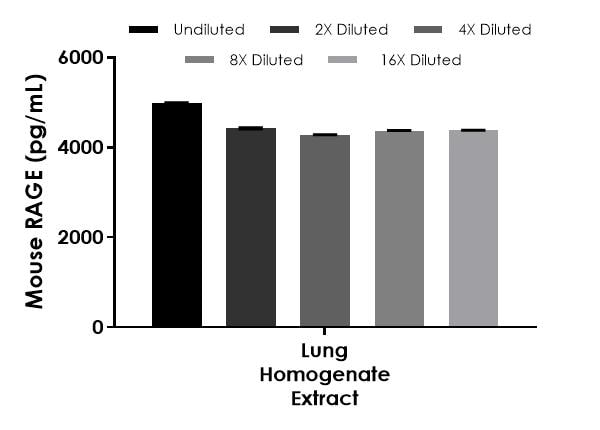 Interpolated concentrations of native RAGE in mouse lung homogenate extract based on a 0.53 µg/mL extract load.