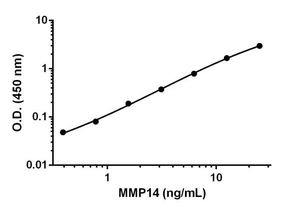 Example of MMP14 standard curve prepared in 1X Cell Extraction Buffer PTR.