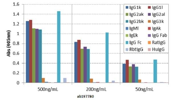 ELISA - Anti-mouse IgG Fc antibody [RMG06] (ab197780)