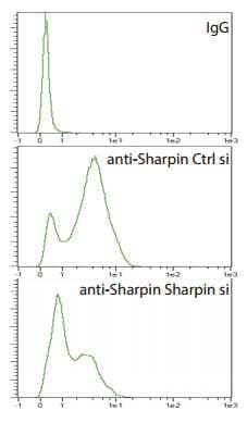 Flow Cytometry - Anti-SHARPIN antibody (ab197853)
