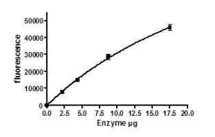 Functional Studies - Recombinant human Visfatin protein (ab198090)