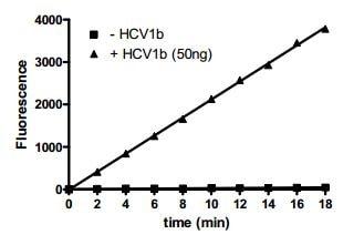 Functional Studies - Recombinant hepatitis c virus Hepatitis C Virus NS3 + NS4A protein (ab198093)