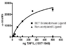 Functional Studies - Recombinant Human TAF1L protein (ab198128)