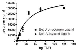 Functional Studies - Recombinant human TAF1 protein (ab198139)