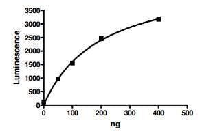 Functional Studies - Recombinant Human Dnmt1 protein (ab198140)