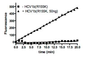 Functional Studies - Recombinant hepatitis c virus Hepatitis C Virus 1b core antigen protein (ab198158)
