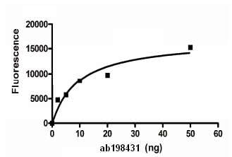 Functional Studies - Recombinant human PGP9.5 protein (ab198431)