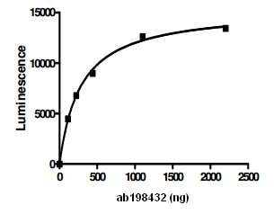 Functional Studies - Recombinant human USP14/TGT protein (ab198432)