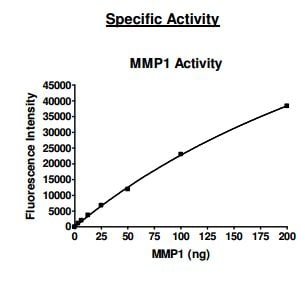 Functional Studies - Recombinant human MMP1 protein (Active) (ab198437)