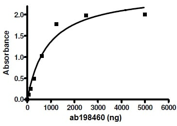 Functional Studies - Recombinant rat PDE7B protein (ab198460)