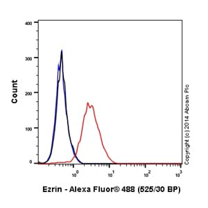 Flow Cytometry - Anti-Ezrin antibody [EP886Y] (Alexa Fluor® 488) (ab198520)