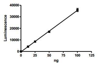 Functional Studies - Recombinant human Tankyrase 2/TNKS2 protein (ab198755)