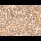 Immunohistochemistry (Formalin/PFA-fixed paraffin-embedded sections) - Anti-MLK3 antibody - C-terminal (ab198844)