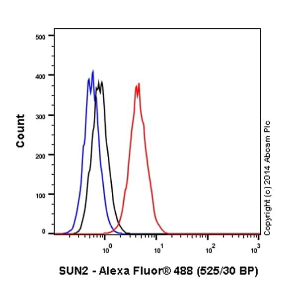 Flow Cytometry - Anti-SUN2 antibody [EPR6557] (Alexa Fluor® 488) (ab198981)