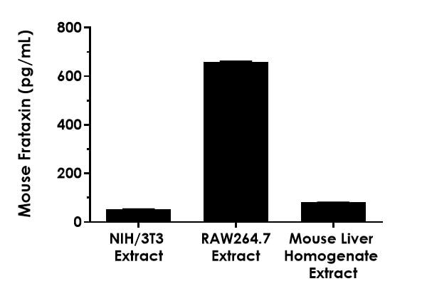 Quantitation of mouse Frataxin protein expression in different cell and tissue extract.