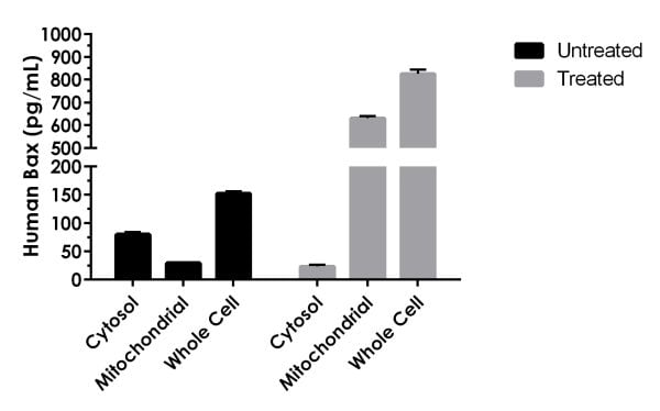 Comparison of Bax distribution in subcellular fractions derived from 3.7x103 HeLa cells and whole cells cultured in the presence (treated) or absence (untreated) of 1 µM staurosporine for 4 hours