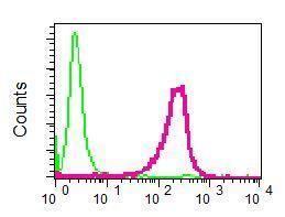 Flow Cytometry - Anti-Egr1 antibody [EPR5014(2)] - BSA and Azide free (ab199248)