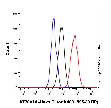 Flow Cytometry - Anti-ATP6V1A antibody [EPR19270] (ab199326)
