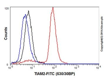 Flow Cytometry - Anti-TIAM2 antibody [EPR16838] (ab199426)