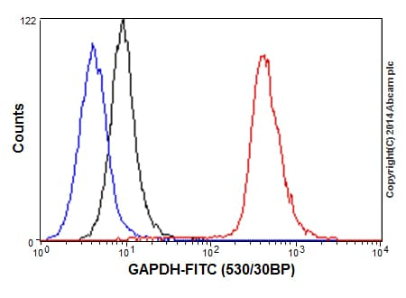 Flow Cytometry - Anti-GAPDH antibody [EPR16884] - BSA and Azide free (ab199554)