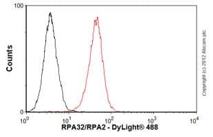 Flow Cytometry - Anti-RPA32/RPA2 antibody [9H8] (ab2175)