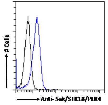 Flow Cytometry - Anti-PLK4 antibody (ab2642)