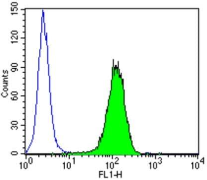 Flow Cytometry - Anti-KPNB1 antibody [3E9] (ab2811)
