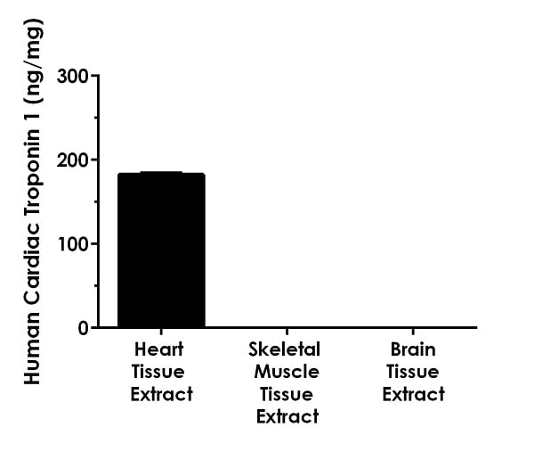 Comparison of Cardiac Troponin 1 in various human tissue extracts.