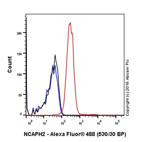 Flow Cytometry (Intracellular) - Anti-NCAPH2 antibody [EPR17170] (ab200659)
