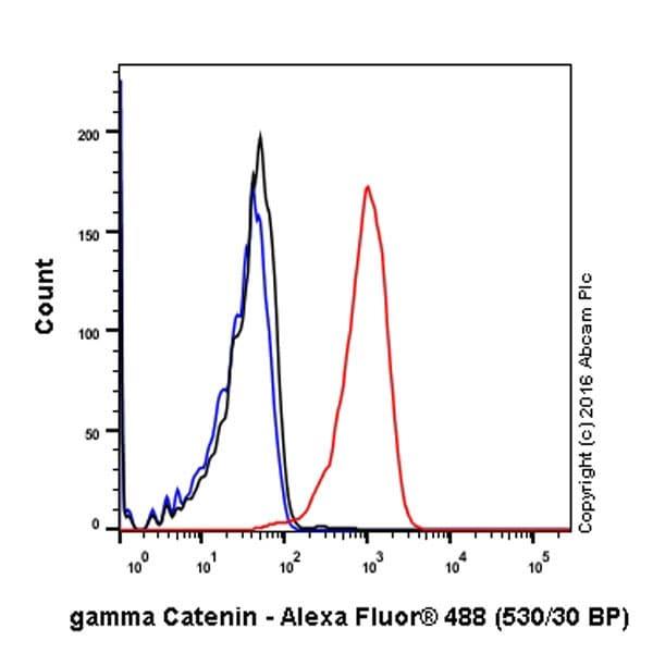 Flow Cytometry - Anti-gamma Catenin antibody [EPR17310-48] (ab200661)