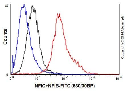 Flow Cytometry - Anti-NFIB / NF1B2 + NFIC / CTF antibody [EPR14504] (ab200829)