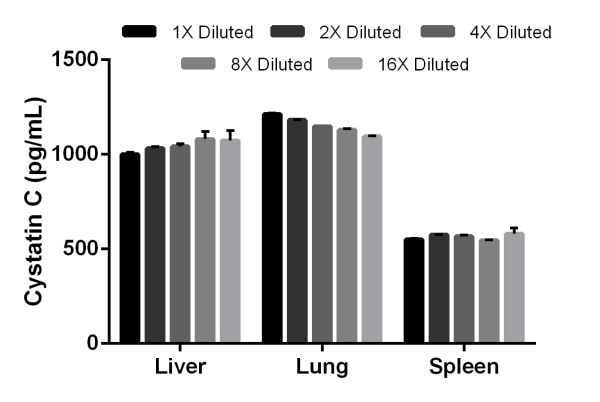 Titration of mouse Cystatin C expression in liver, lung, and spleen tissue extracts.