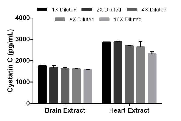 Titration of rat Cystatin C expression in brain and heart tissue extracts.