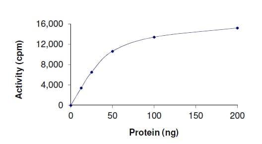 Functional Studies - Recombinant human IKKi/IKKe protein (ab201367)