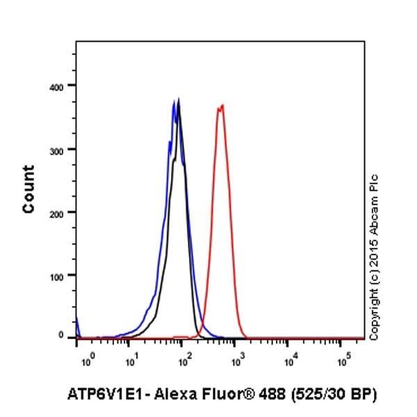 Flow Cytometry - Anti-ATP6V1E1 antibody [EPR19602] (ab201468)