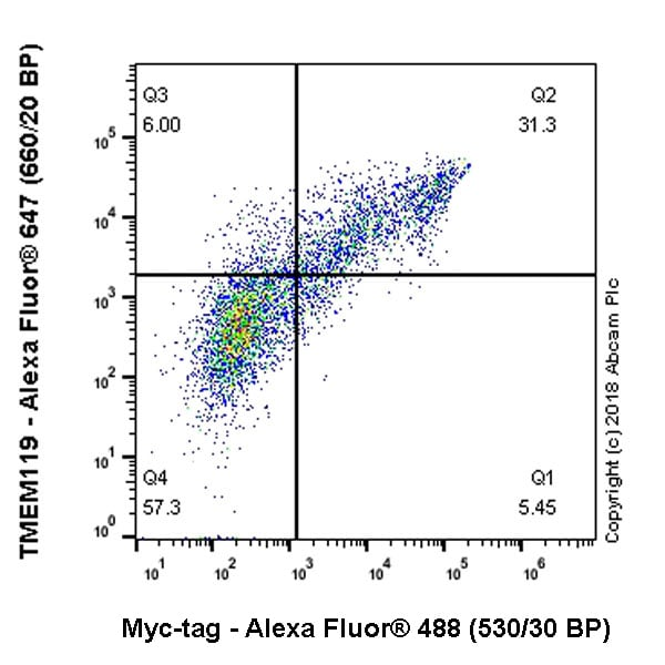 Flow Cytometry - Alexa Fluor® 488 Anti-Myc tag antibody [9E10] (ab202008)