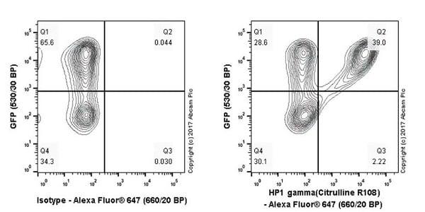 Flow Cytometry (Intracellular) - Anti-HP1 gamma/CBX3 (citrulline R108) antibody [EPR19802-202] (ab202107)