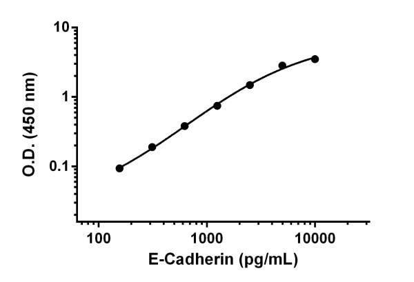 Example of E-Cadherin standard curve.