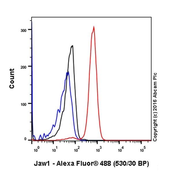 Flow Cytometry - Anti-LRMP antibody [EPR17852] (ab202418)