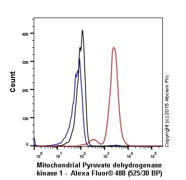 Flow Cytometry - Anti-PDK1 antibody [EPR19571] (ab202468)
