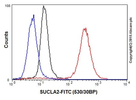 Flow Cytometry - Anti-SUCLA2 antibody [EPR14924] (ab202582)