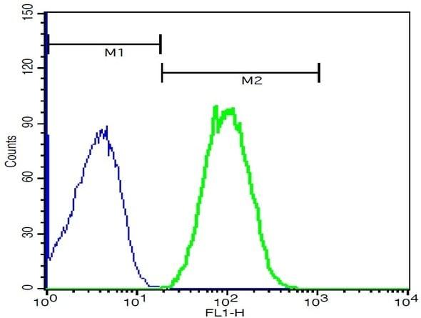 Flow Cytometry - Anti-CD21 antibody - C-terminal (ab203299)