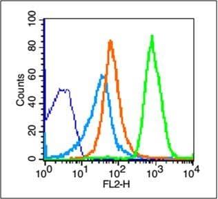 Flow Cytometry - Anti-NKG2D antibody (ab203353)
