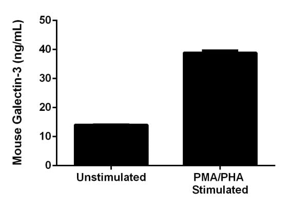 Comparison of secreted Galectin-3 in unstimulated and PMA/PHA-stimulated J774A.1 Cells.