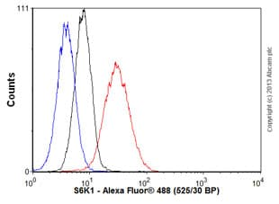 Flow Cytometry - Anti-S6K1 antibody [E343] - BSA and Azide free (ab203558)