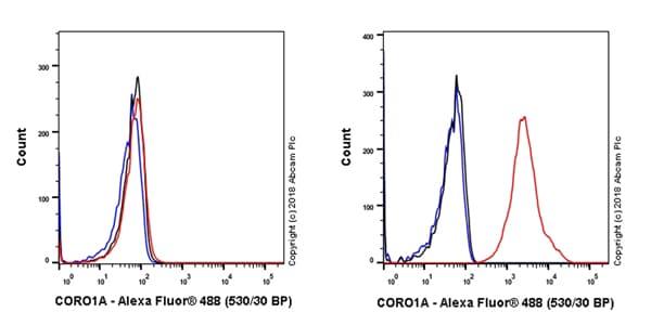 Flow Cytometry - Anti-Coronin 1a/TACO antibody [EPR19467-36] (ab203698)
